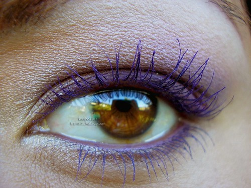 Purple Popping Brown Eyes Closeup