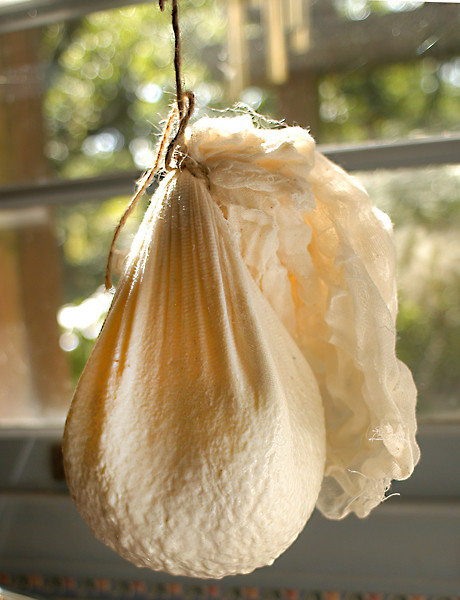 cheese hanging bag