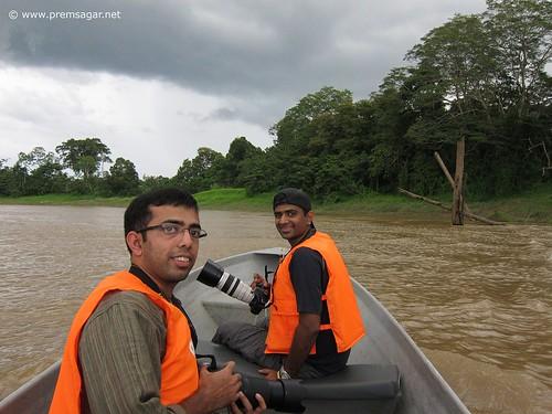 On the Kinabatangan river