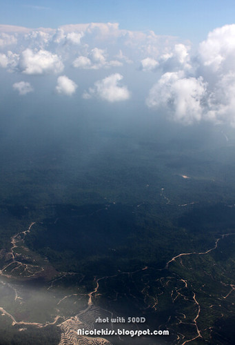 air view of mulu national park