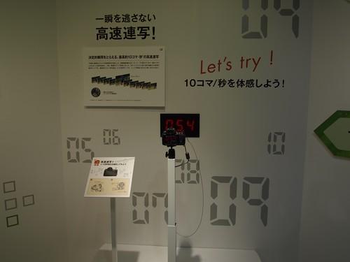 α55 try demo