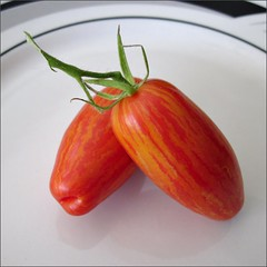 Red Striped Roma Tomatoes