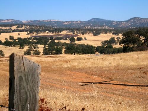 Grass Valley Gate 5