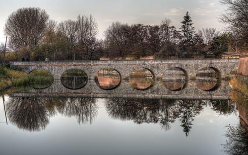 Reflections III/Odrazy III