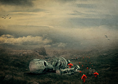 I Want To Believe (chiaralily) Tags: old flower history texture photoshop skeleton secret grunge alien surreal manipulation faded conspiracy 365 tutorial xfiles ourtime greymen shockofthenew itsanaddiction obsidiandawn teagans altrafotografia chiaralily luciegstock