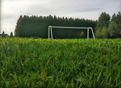 Felida Community Park soccer