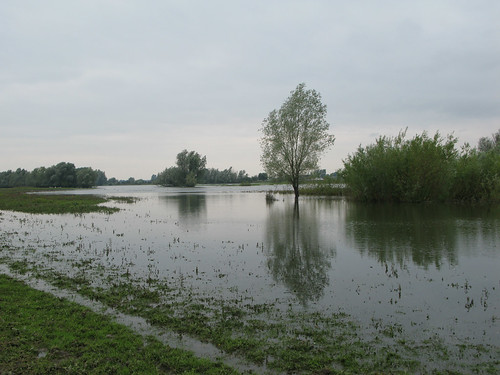 058-flood-plain