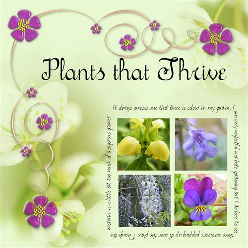 Plants that Thrive