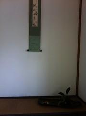 20100912  床飾り  (Gayou Bunjin) Tags: iriya morimono 20100912