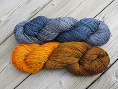 BFL pumpkin and midnight 1