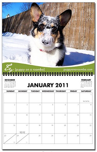 2011 Corgis (with blogs) Calendar