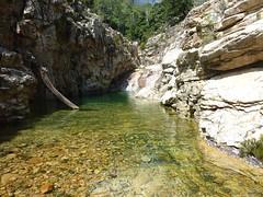 Entre la confluence Quercitella et la confluence Valdu : le bief rocheux à contourner en RD