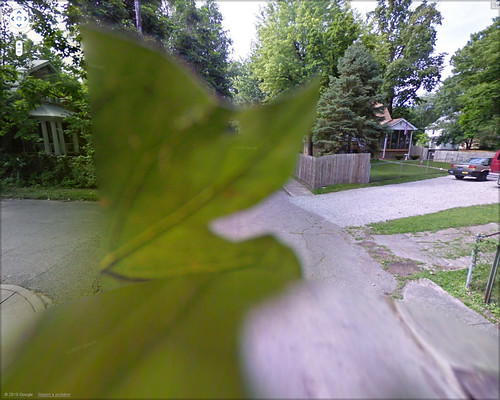 leafy-streetview