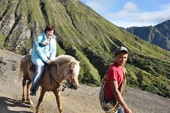 DSC_0802 (_Codename_) Tags: horse indonesia volcano java locals tourists bromo 2010 mountbromo mtbromo bromotenggersemerunationalpark mtbatok mountbatok