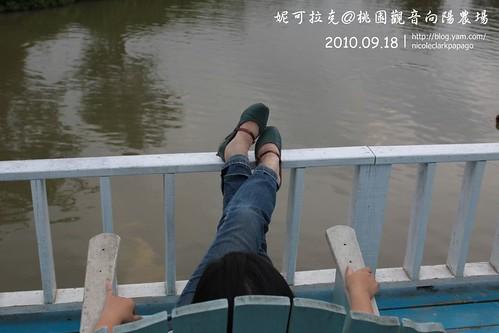 桃園觀音向陽農場20100918-050