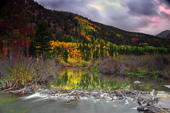 Cottonwood Pass Fall (Tom Herlyck) Tags: trees sunset fall clouds colorado aspen beaverdam beaverpond cottonwoodpass