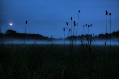 The Blue Fog.... (Hitman.47 (BuriedDreams.nl)) Tags: blue moon nature fog night canon landscape evening lonely serenitynow 50d mywinners canoneos50d canon50d bestcapturesaoi wwwburieddreamsnl