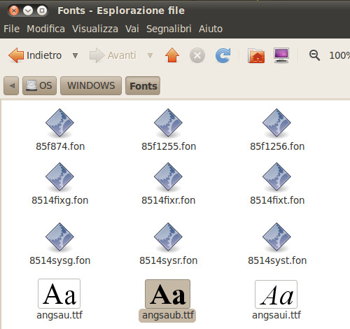 Figura 3 - Directory font di Windows.