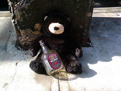 bear-with-booze