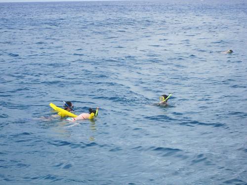 Snorkeling catamaran trip