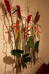 flowers 1 040