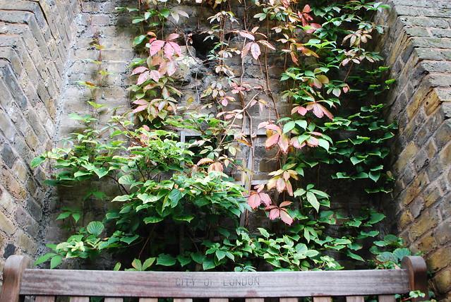 a secret city garden