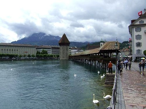 view of Kapellbrucke and swans on lake Lucerne