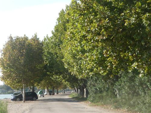 cullera road river