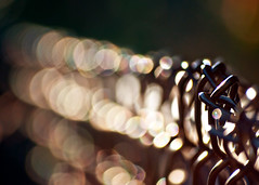 Bokeh is a girl's best friend. {Explored - FP} (eRachel11) Tags: light black fence evening nikon bokeh fencing chainlinkfence friday d90 fencefriday