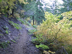 Starting up Shriner Peak trail.