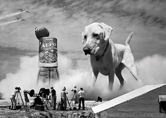 Dogzilla! (jrtce1) Tags: dog pet silly labrador humor nasa dogfood godzilla scifi sciencefiction yellowlabrador funnypets purina bmovie alpo largedog giantdog funnydogphoto jrtce1 nasaremix nasaarchivephotograph