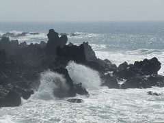 Rough rocks and waves, Jeju (NettyA) Tags: ocean travel sea cliff rock island seaside waves coastal southkorea jeju volcanic rok jejudo cheju republicofkorea jusangjeolli