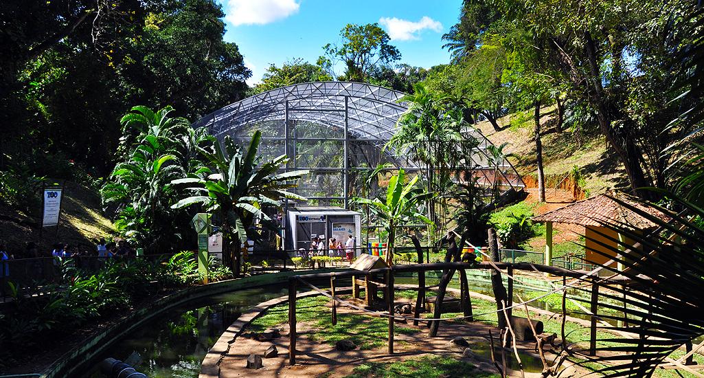 soteropoli.com fotografia fotos de salvador bahia brasil brazil 2010 zoo zoologico by tuniso (26)