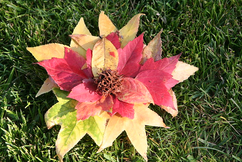 Finished Leaf Art