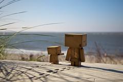 The Danbos see the sea (generalstussner) Tags: sun beach canon see sand 5d adventures 24105 danbo revoltech danboard 5dmarkii