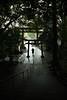 雨上がりの参道