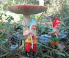 Down in the woods! (ladyjaypeg) Tags: mushroom woodland garden mushrooms gnome woods dwarf yorkshire pixie fungi elf toadstool littlepeople pixies snowwhite gnomes dwarves elves toadstools pottericcarr gardengnomes yorkshirewildlifetrust
