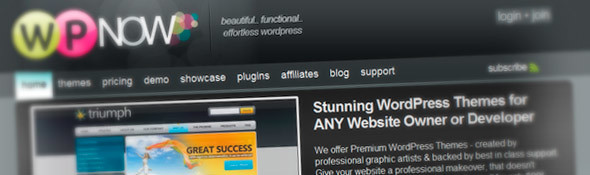 Premium WordPress Themes por WP Now