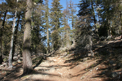 Esmeralda Trail starts as part of an old miners road