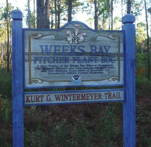 Weeks Bay Pitcher Plant Bog sign