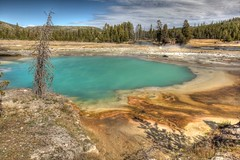 Thermal Pool in Biscuit Basin near Firehole River (Princess Stand in the Rain) Tags: bear sky fall nature photography photo contest oldfaithful meadows pines waterfalls yellowstone elk bison hdr thermals grandprismatic libertycap fireholeriver lodgepole thermophiles wraithfalls undinefalls biscuitbasin hdrphotography angienglish tnc11 photocontesttnc12