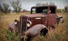 IH pickup (Huleo-1) Tags: