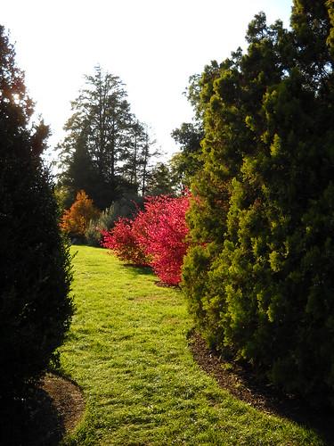 Longwood October 2010 105