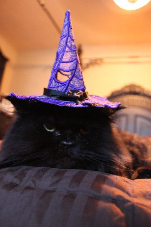 IN UR FSL WITCH HAT, CASTIN SPELZ ON U