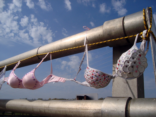 bra-bridge-1