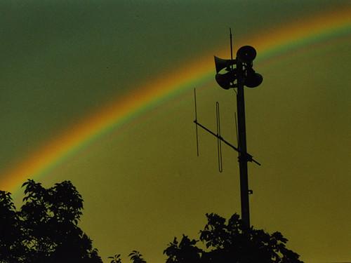 webdice_miyazawa_rainbow