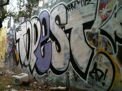 topest (FASTPAYED$$) Tags: nk fpm topest