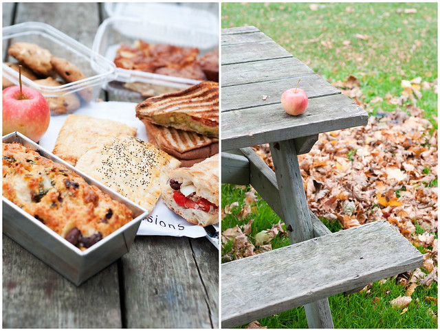Picnic Collage 2a