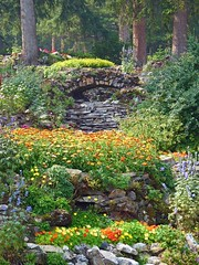 Rock Garden (njchow82) Tags: flowers trees summer plants nature landscape scenic banff rockgarden banffnationalpark canadianrockies cascadegardens beautifulexpression scenicsnotjustlandscapes njchow82 dmcfz35