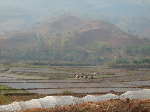 Farming in Yen Chau, Vietnam